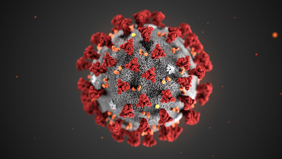 Patavium 2003 sospende le attività per fronteggiare l'emergenza coronavirus